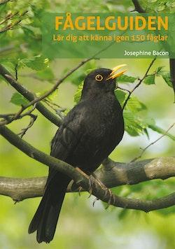 Fågelguiden: lär dig känna igen 150 fåglar