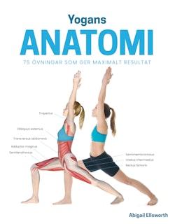 Yogans anatomi : 75 övningar som ger maximalt resultat