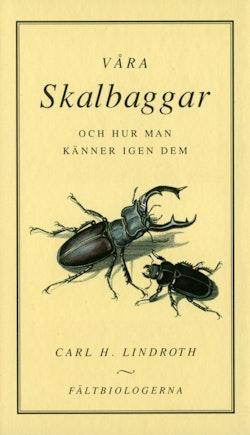 Våra skalbaggar