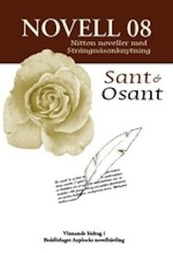 Novell 08 : nitton noveller med strängnäsanknytning - Sant & osant