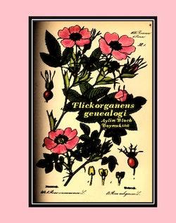 Flickorganens genealogi