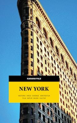 New York : historia, krog, Sverige, arkitektur, film, natur, musik, kultur