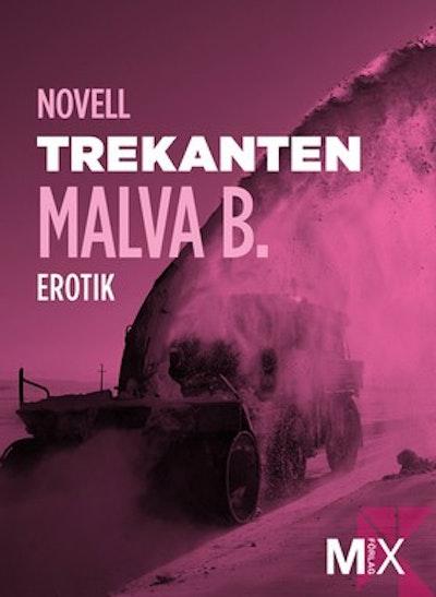 Trekanten : en novell ur Begär