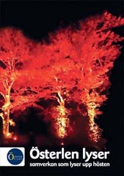 Österlen lyser : samverkan som lyser upp hösten