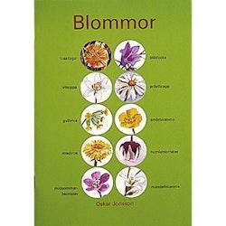 Blommor (1-10)