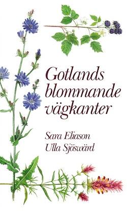 Gotlands blommande vägkanter