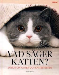 Vad säger katten?