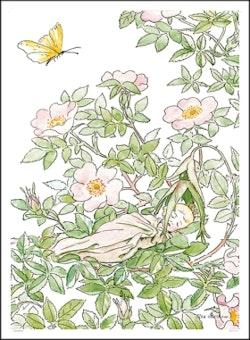 Poster Prinsessan Nyponblom- Beskow