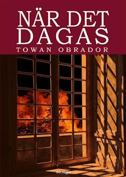 När det dagas : historisk roman från Gotlands 1600-tal ca 1603 - 1610