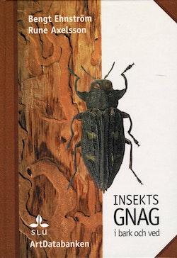 Insektsgnag i bark och ved