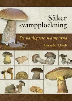 Säker svampplockning : de vanligaste svamparna