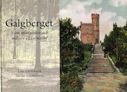 Galgberget : om människor och miljöer i Halmstad