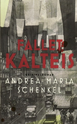 Fallet Kalteis : kriminalroman