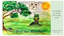 Visst har Max Flax?