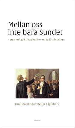 Mellan oss inte bara sundet : dansk-svenska litterära förbindelser