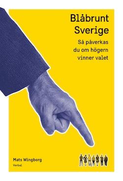 Blåbrunt Sverige : Så påverkas du om högern vinner valet