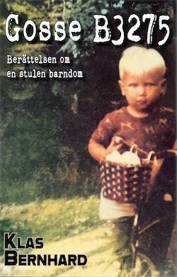 Gosse B3275 : berättelsen om en stulen barndom