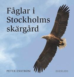 Fåglar i Stockholms skärgård