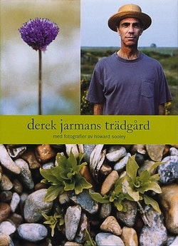 Derek Jarmans trädgård
