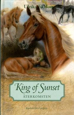 King of Sunset : återkomsten