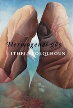 Hermogenes gås