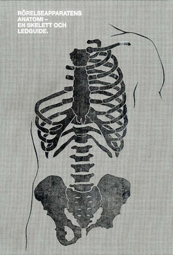 Rörelseapparatens anatomi : en skelett och ledguide