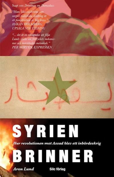 Syrien brinner : hur revolutionen mot Assad blev ett inbördeskrig