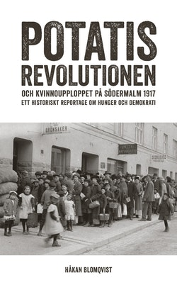 Potatisrevolutionen och kvinnoupploppet på Södermalm 1917 : ett historiskt reportage om hunger och demokrati