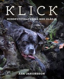 Klick : hundfotografering med glädje