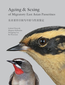 Ageing & sexing of migratory East Asian passerines