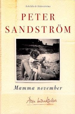 Mamma november : åtta betraktelser